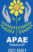 APAE ISO 9001